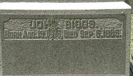 BIGGS, JOHN - Delaware County, Ohio | JOHN BIGGS - Ohio Gravestone Photos