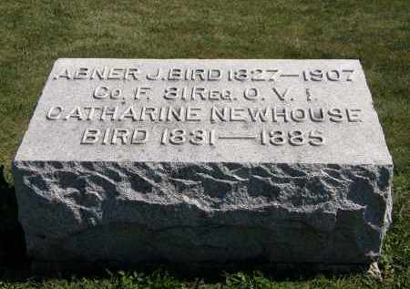 BIRD, CATHARINE - Delaware County, Ohio | CATHARINE BIRD - Ohio Gravestone Photos