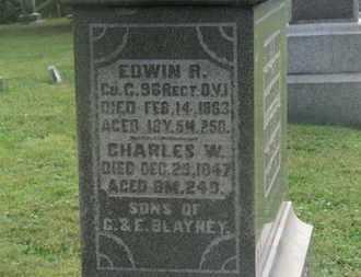 BLAYNEY, CHARLES W. - Delaware County, Ohio | CHARLES W. BLAYNEY - Ohio Gravestone Photos