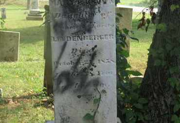LINDENBERGER BOWN, MARY - Delaware County, Ohio | MARY LINDENBERGER BOWN - Ohio Gravestone Photos