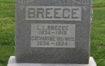 BREECE, CATHARINE - Delaware County, Ohio | CATHARINE BREECE - Ohio Gravestone Photos