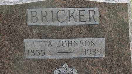 JOHNSON BRICKER, ETTA - Delaware County, Ohio | ETTA JOHNSON BRICKER - Ohio Gravestone Photos