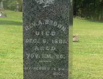 BROWN, REV. A. - Delaware County, Ohio | REV. A. BROWN - Ohio Gravestone Photos