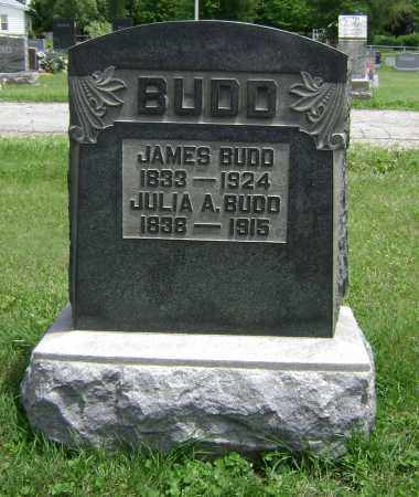 BUDD, JULIA A - Delaware County, Ohio | JULIA A BUDD - Ohio Gravestone Photos