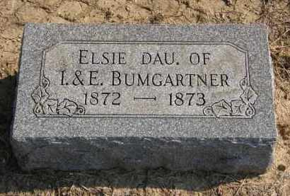 BUMGARTNER, ELSIE - Delaware County, Ohio | ELSIE BUMGARTNER - Ohio Gravestone Photos