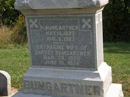 BUMGARTNER, CATHARINE - Delaware County, Ohio | CATHARINE BUMGARTNER - Ohio Gravestone Photos