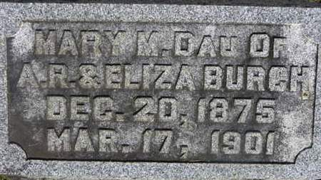BURCH, A.R. - Delaware County, Ohio | A.R. BURCH - Ohio Gravestone Photos