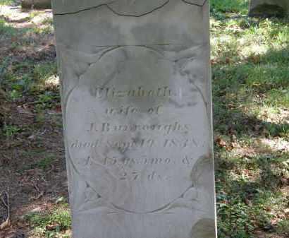 BURROUGHS, ELIZABETH - Delaware County, Ohio | ELIZABETH BURROUGHS - Ohio Gravestone Photos