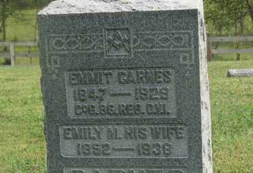 CARNES, EMMIT - Delaware County, Ohio | EMMIT CARNES - Ohio Gravestone Photos