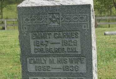 CARNES, EMILY M. - Delaware County, Ohio | EMILY M. CARNES - Ohio Gravestone Photos