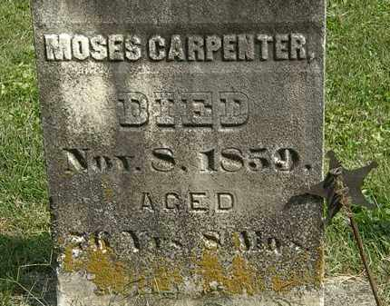 CARPENTER, MOSES - Delaware County, Ohio | MOSES CARPENTER - Ohio Gravestone Photos