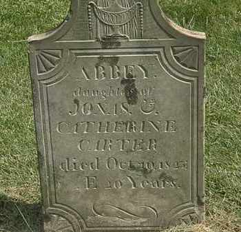 CARTER, ABBEY - Delaware County, Ohio | ABBEY CARTER - Ohio Gravestone Photos