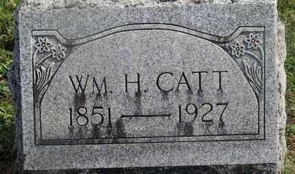 CATT, WM. H. - Delaware County, Ohio | WM. H. CATT - Ohio Gravestone Photos