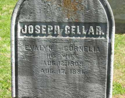 CELLAR, EVALYN CORNELIA - Delaware County, Ohio | EVALYN CORNELIA CELLAR - Ohio Gravestone Photos