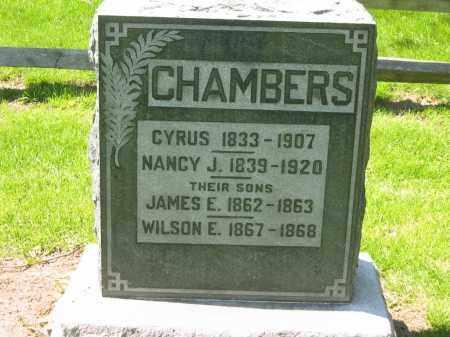 CHAMBERS, CYRUS - Delaware County, Ohio | CYRUS CHAMBERS - Ohio Gravestone Photos