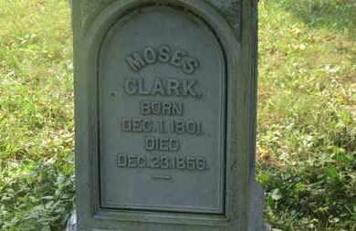 CLARK, MOSES - Delaware County, Ohio | MOSES CLARK - Ohio Gravestone Photos