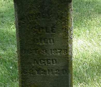 COLE, SYDNEY H. - Delaware County, Ohio | SYDNEY H. COLE - Ohio Gravestone Photos