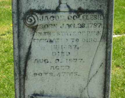 COLEFLESH, JACOB - Delaware County, Ohio | JACOB COLEFLESH - Ohio Gravestone Photos