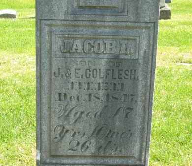 COLEFLESH, JACOB L. - Delaware County, Ohio | JACOB L. COLEFLESH - Ohio Gravestone Photos