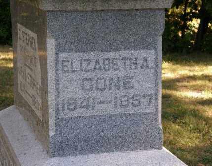 CONE, ELIZABETH A. - Delaware County, Ohio | ELIZABETH A. CONE - Ohio Gravestone Photos