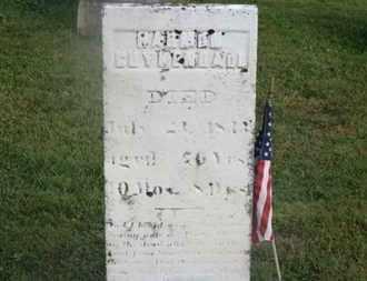 COYKENDALL, ??? - Delaware County, Ohio | ??? COYKENDALL - Ohio Gravestone Photos