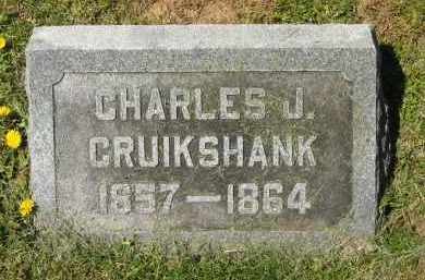 CRUIKSHANK, CHARLES J. - Delaware County, Ohio | CHARLES J. CRUIKSHANK - Ohio Gravestone Photos