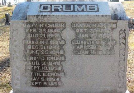 CRUMB, FRANKLIN C. - Delaware County, Ohio | FRANKLIN C. CRUMB - Ohio Gravestone Photos
