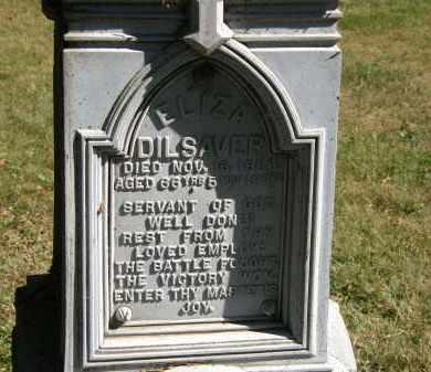 DILSAVER, ELIZA - Delaware County, Ohio | ELIZA DILSAVER - Ohio Gravestone Photos