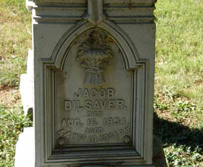DILSAVER, JACOB - Delaware County, Ohio | JACOB DILSAVER - Ohio Gravestone Photos
