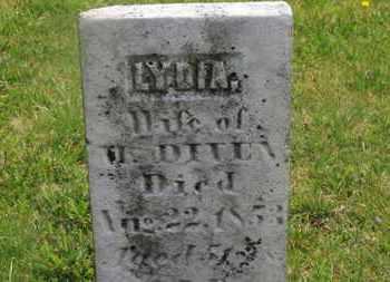 DIVEN, LYDIA - Delaware County, Ohio | LYDIA DIVEN - Ohio Gravestone Photos