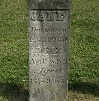 DOMIGAN, JANE - Delaware County, Ohio | JANE DOMIGAN - Ohio Gravestone Photos