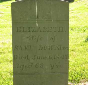 DOWNING, ELIZABETH - Delaware County, Ohio | ELIZABETH DOWNING - Ohio Gravestone Photos