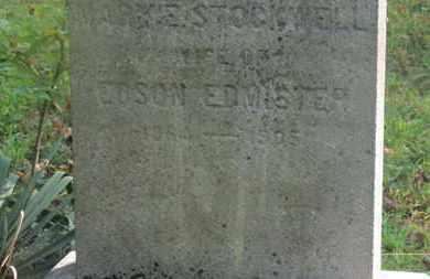 EDMISTER, EDSON - Delaware County, Ohio | EDSON EDMISTER - Ohio Gravestone Photos