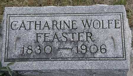 WOLFE FEASTER, CATHARINE - Delaware County, Ohio | CATHARINE WOLFE FEASTER - Ohio Gravestone Photos