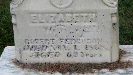 FERGUSON, ELIZABETH - Delaware County, Ohio | ELIZABETH FERGUSON - Ohio Gravestone Photos