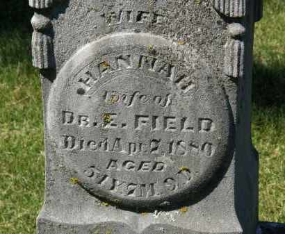 FIELD, HANNAH - Delaware County, Ohio | HANNAH FIELD - Ohio Gravestone Photos