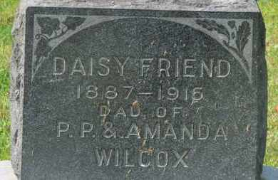 FRIEND, DAISY - Delaware County, Ohio | DAISY FRIEND - Ohio Gravestone Photos