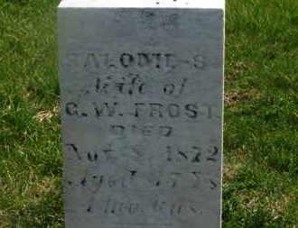 FROST, SALOME S. - Delaware County, Ohio | SALOME S. FROST - Ohio Gravestone Photos
