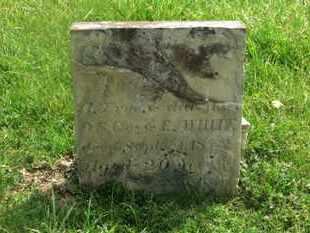 FRYE, ELIZA G. - Delaware County, Ohio | ELIZA G. FRYE - Ohio Gravestone Photos