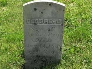 FRYE, E.G. - Delaware County, Ohio | E.G. FRYE - Ohio Gravestone Photos
