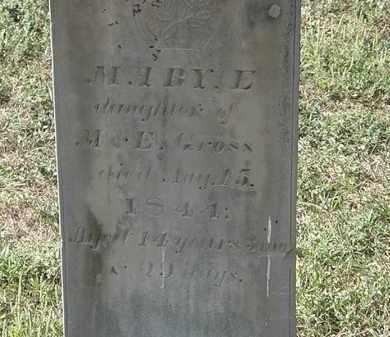 GROSS, MARY E. - Delaware County, Ohio | MARY E. GROSS - Ohio Gravestone Photos