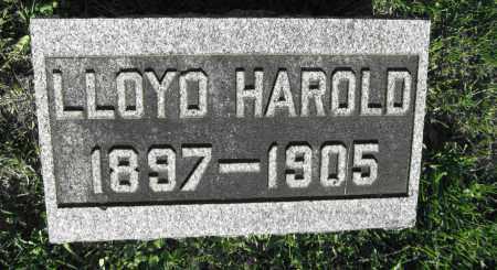 HAMNER, LLOYD HAROLD - Delaware County, Ohio | LLOYD HAROLD HAMNER - Ohio Gravestone Photos