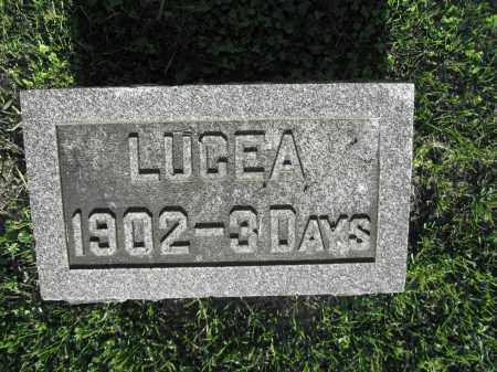 HAMNER, LUCEA - Delaware County, Ohio | LUCEA HAMNER - Ohio Gravestone Photos