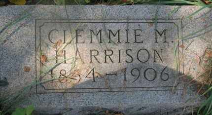 HARRISON, CLEMMIE M. - Delaware County, Ohio | CLEMMIE M. HARRISON - Ohio Gravestone Photos