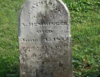 HEMMINGER, CATHARINE - Delaware County, Ohio | CATHARINE HEMMINGER - Ohio Gravestone Photos