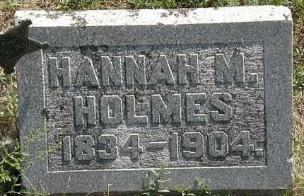 HOLMES, HANNAH M. - Delaware County, Ohio | HANNAH M. HOLMES - Ohio Gravestone Photos