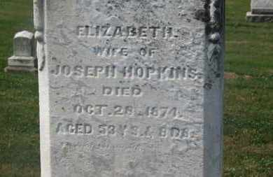 HOPKINS, ELIZABETH - Delaware County, Ohio | ELIZABETH HOPKINS - Ohio Gravestone Photos