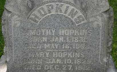 HOPKINS, TIMOTHY - Delaware County, Ohio | TIMOTHY HOPKINS - Ohio Gravestone Photos