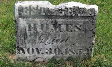 HUMES, ESTHER M. - Delaware County, Ohio | ESTHER M. HUMES - Ohio Gravestone Photos