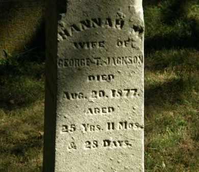 JACKSON, HANNAH M. - Delaware County, Ohio | HANNAH M. JACKSON - Ohio Gravestone Photos